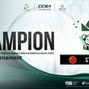 Chinese-UAE