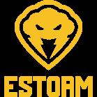 ESTORM Gaming